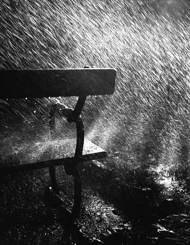 Foto Robert Häusser: Bank im Regen, 1942