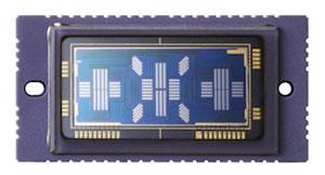 Foto vom AF-Sensor der EOS-1D X