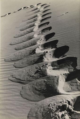 Foto Alfred Ehrhardt: Kurische Nehrung, Fußstapfen am Steilhang einer Düne, 1934