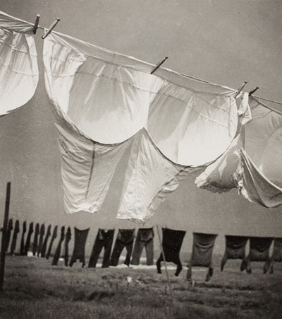Foto Herbert List, Wäsche im Wind, Finkenwerder, 1934