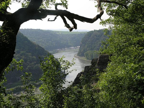 Foto Oberes Mittelrheintal, Blick auf die Loreley