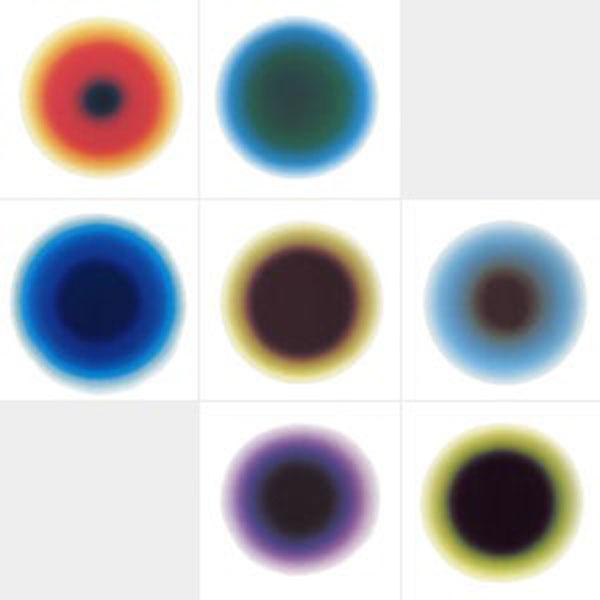 Karl Martin Holzhäuser (*1944), Licht-Punkt-Serie 1995