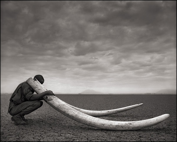 Foto © Nick Brandt, Ranger With Tusks of Killed Elephant, Amboseli, 2011
