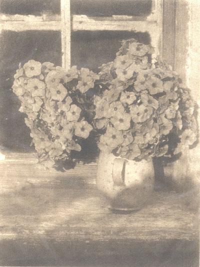 Heinrich Kühn, Stillleben, Blumen in Vase, um 1914