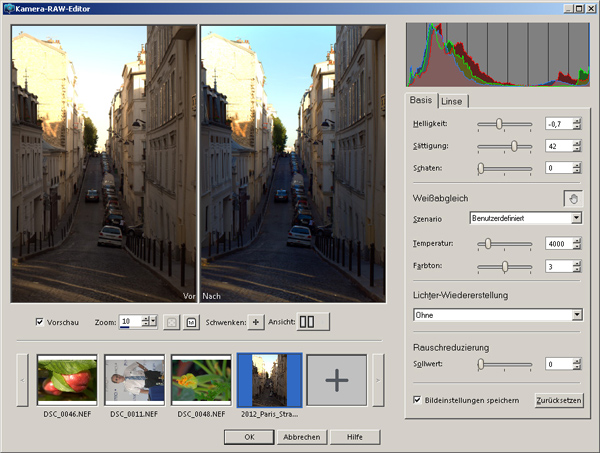 PaintShop Pro X8: RAW-Editor
