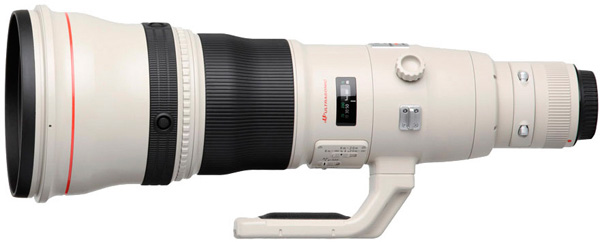 Canon EF 800mm 5.6 L IS USM