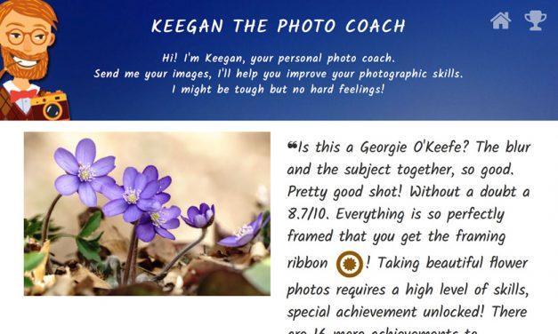 Keegan analysiert Ihre Fotos – automatisch