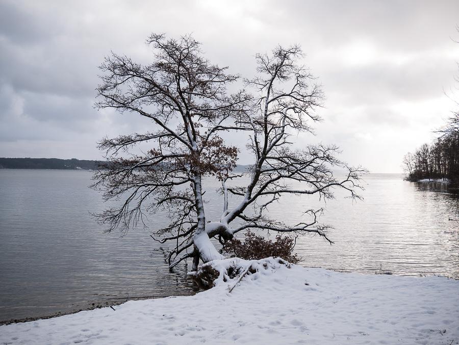 Panasonic G81 Landschaftsfoto