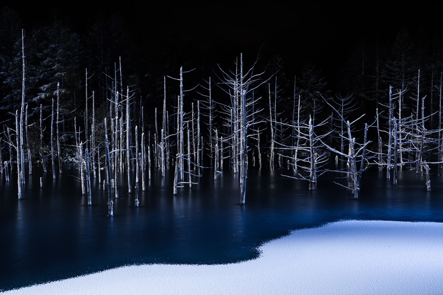 Natur: Hiroshi Tanita (Japan)