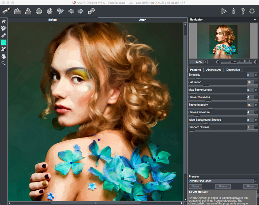 Akvis Oilpaint 6.0 Screenshot
