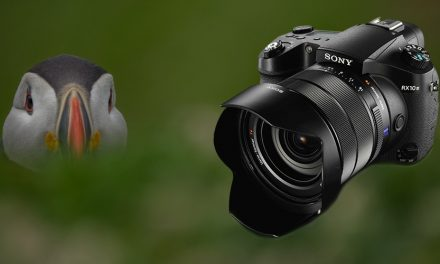 Bedrohte Tierarten fotografiert mit der RX10 III von Sony