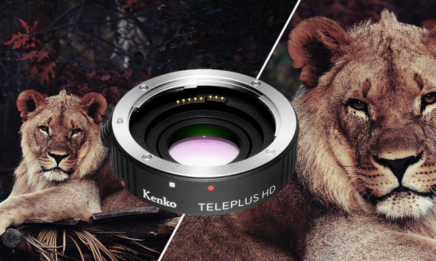 Kenko stellt Telekonverter Teleplus HD DGX vor