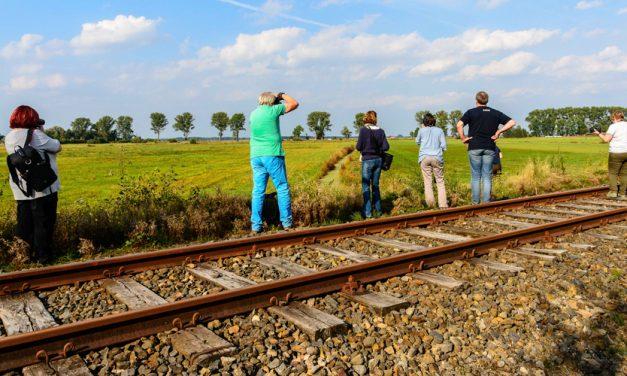 RAW Photofestival stellt attraktives Workshop-Programm vor.