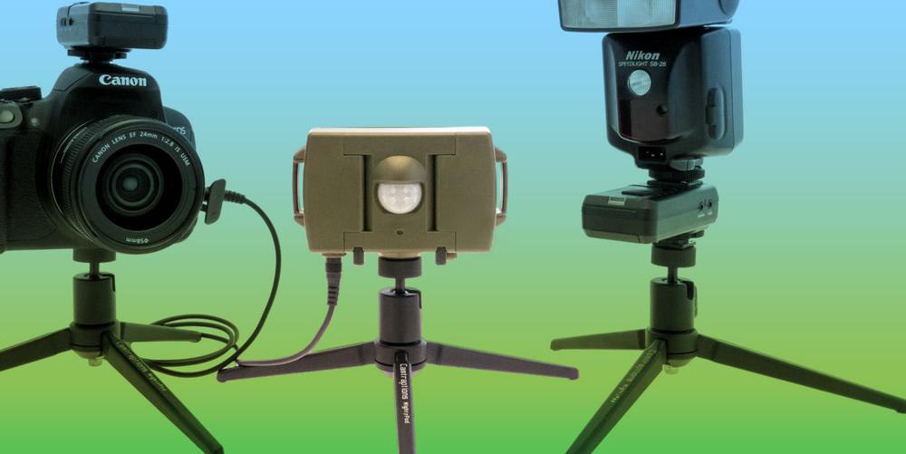 PIR Motion Sensor: Infrarotauslöser für Fotofallen