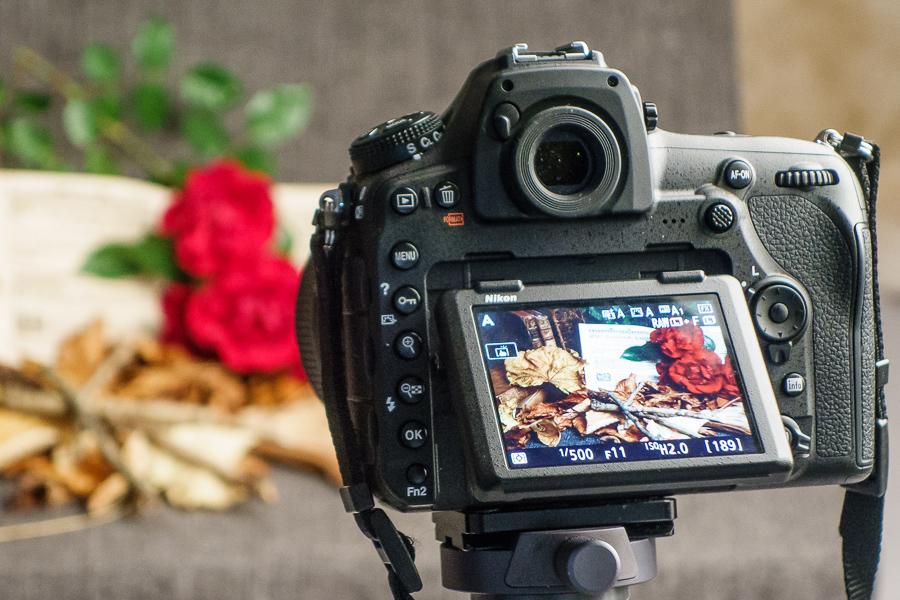 Nikon D850 Klappdisplay