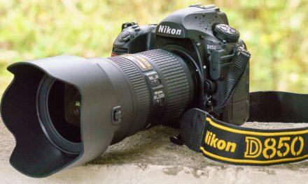 Nikon D850 im Einsatz: Die beste DSLR der Welt?