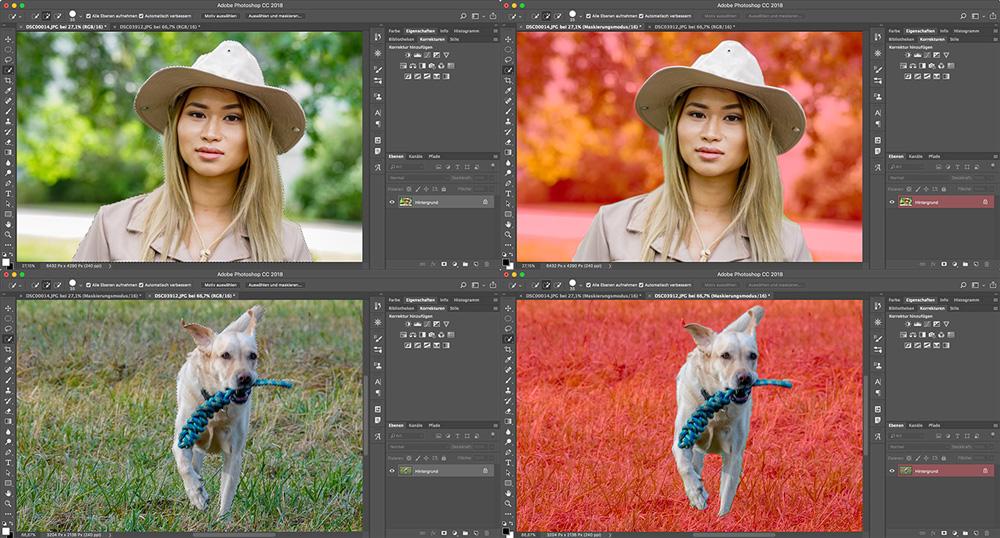 Photoshop 19.1 Motiv auswählen