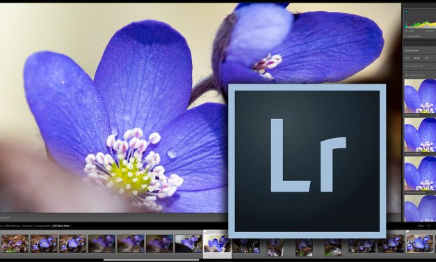 Adobe veröffentlicht Update auf Lightroom Classic CC 7.3.1