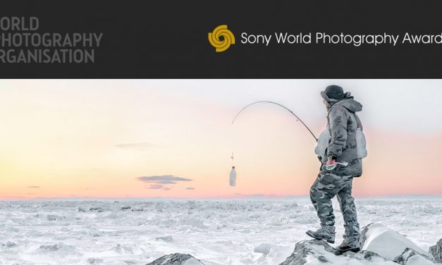 Sony World Photography Awards: Die Gewinner stehen fest