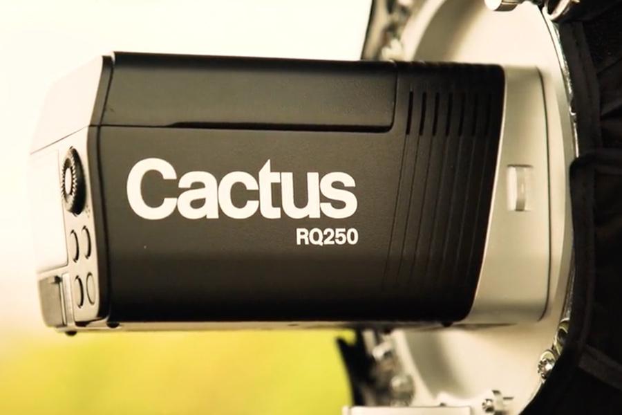 Cactus RQ250 Bajonett