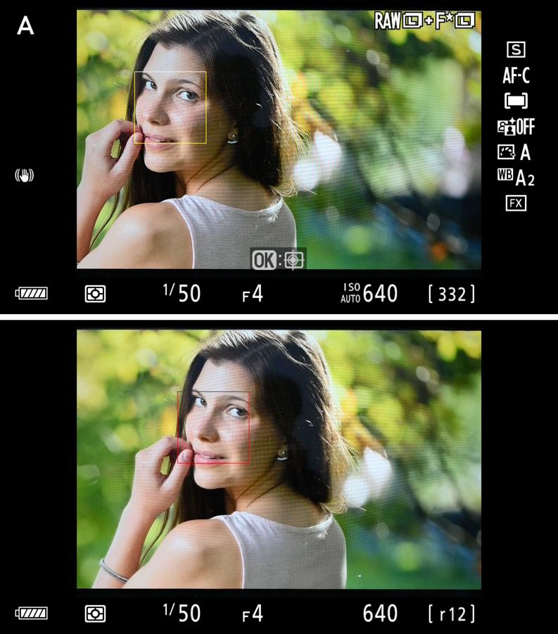 Nikon Z7 Motivverfolgung-AF-lost
