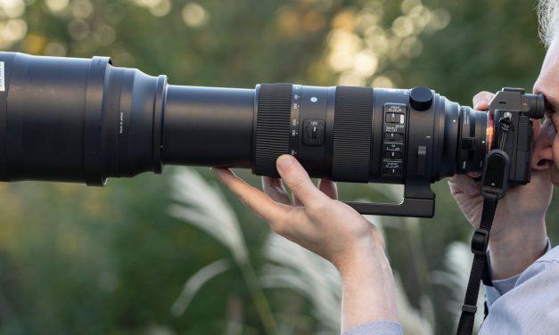 Superzoom Sigma 150-600mm F5-6.3 DG OS HSM Sports im Einsatz an Sony Alpha 7 III und Alpha 7R II