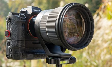 Ausprobiert: Sigma 105mm F1.4 DG HSM | Art für Sony E-Mount