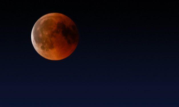Mondfinsternis 2019: Raus mit der Kamera!
