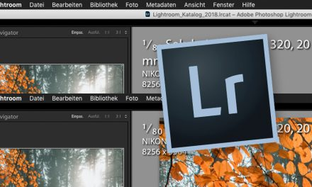Lightroom Classic: CC Oberfläche anpassen