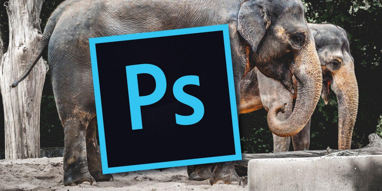 Schneller zum Ziel in Photoshop: RAW-Entwicklungen kombinieren