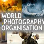 Sony World Photography Awards 2019: Die ersten Gewinner stehen fest