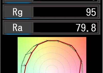 TM-30 (C-800 LCD)