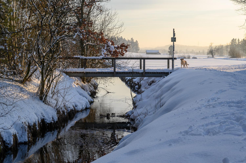 Z6_Schneelandschaft