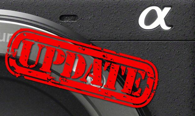 Firmware-Update: Sony bringt Tieraugen-AF für Alpha 6400