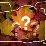 Heiße Herbstgerüchte zu Canon, Ilford, Olympus, Sigma und Sony