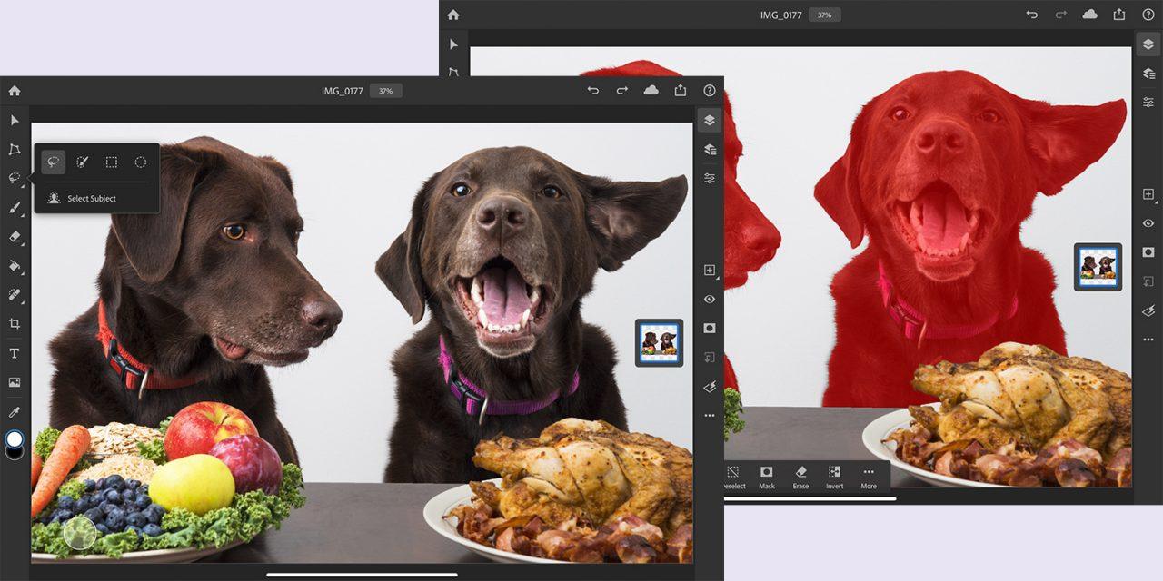 Photoshop fürs iPad: Jetzt auch mit Motivauswahl