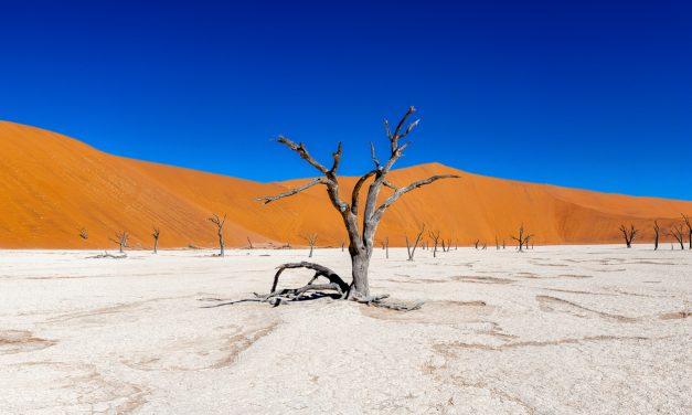 COLOURCLASS Namibia: EIZO zeigt 11 spannende Videos zu Foto-Grundlagen