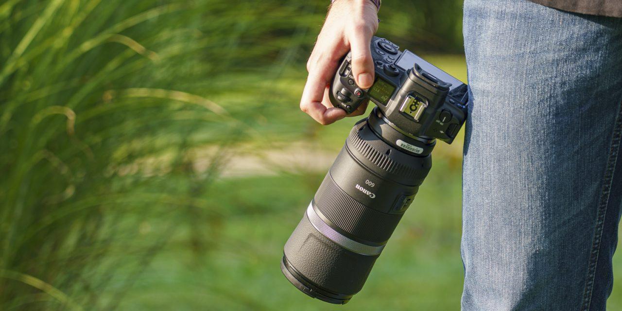 Nicht kurz, aber gut: Canon RF 600mm F11 IS STM