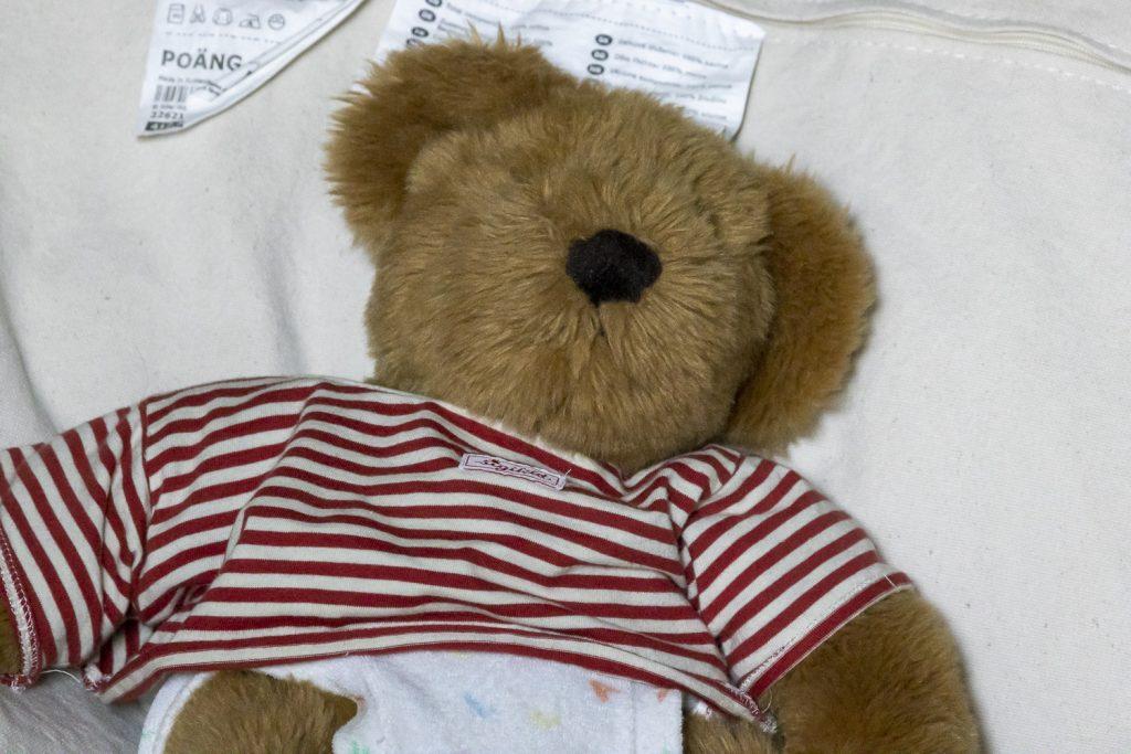 Canon RF600 Teddy