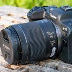 Canon EOS R6 mit RF 24-105mm f/4,0-7,1 IS STM ausprobiert
