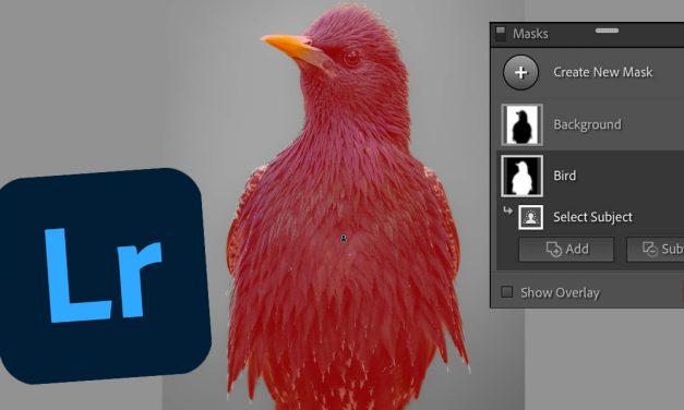 Lightroom und ACR: Adobe enthüllt neue Maskierungs-Tools mit automatischer Motiverkennung
