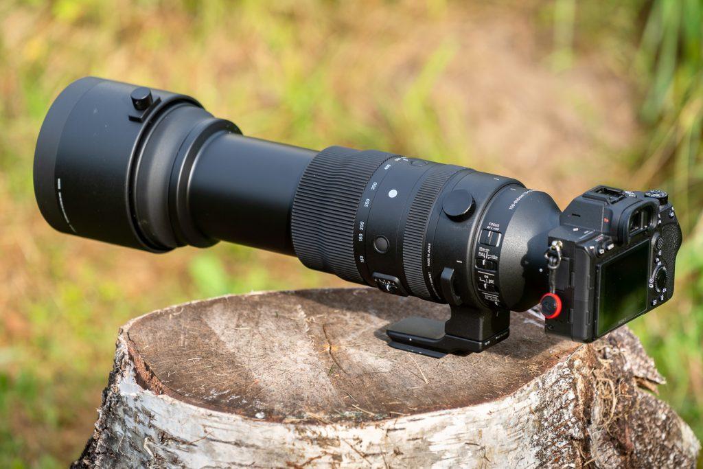 Sigma 150-600_-bei 600mm