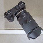 Im Praxiseinsatz: Tamron 18-300mm F/3.5-6.3 Di III-A VC VXD